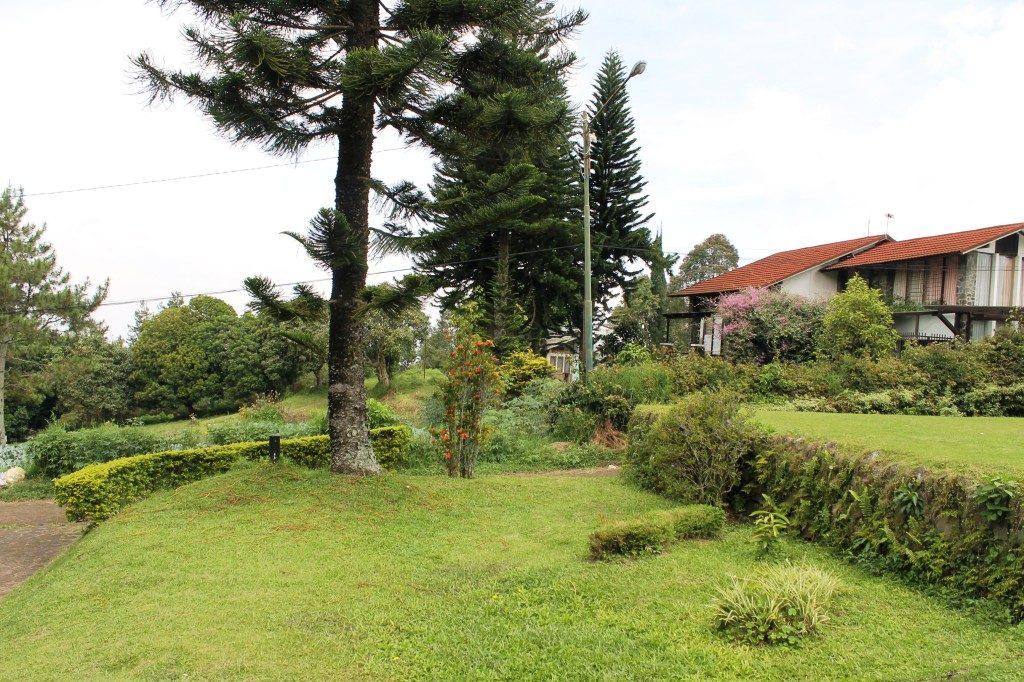 info sewa villa lembang, villa istana bunga lembang